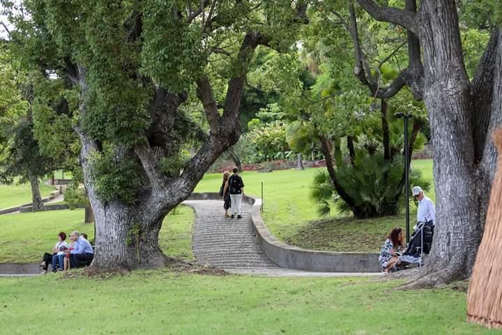Quinta Magnolia BB