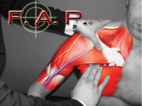 JOIN F.A.P. ON FACEBOOK
