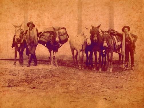Tropeiros - 1894 Até o início do século XX, os tropeiros eram os condutores de mulas ou cavalos que transportavam gado e mercadorias. Geralmente percorriam, em média, 40 Km por dia. Em Varginha, também naquela época, os tropeiros chegavam à cidade constantemente, sempre de chapelão, botas de couro altas e manta jogada no ombro. Os animais carregavam em seus lombos bolsões de couro, onde eram colocadas as comidas e as mercadorias a serem vendidas.