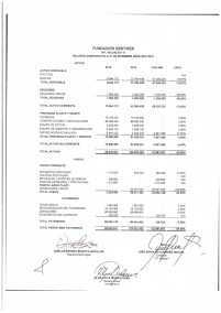 Estados financiero y balances 2019_page-0005