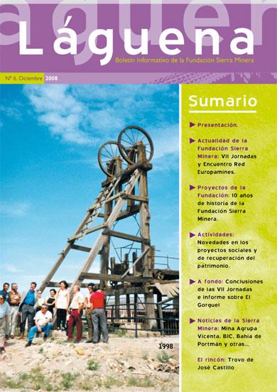 Boletín Informativo: Laguena Nº 6