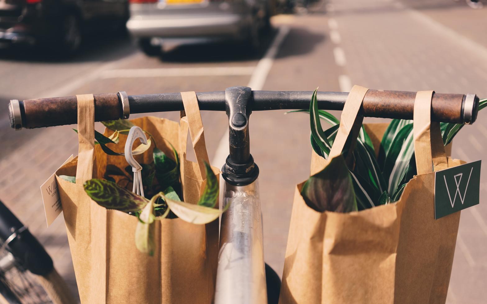 En la imagen se observa dos bolsas de papel café con plantas en su interior, colgadas en el manubrio de una bicicleta