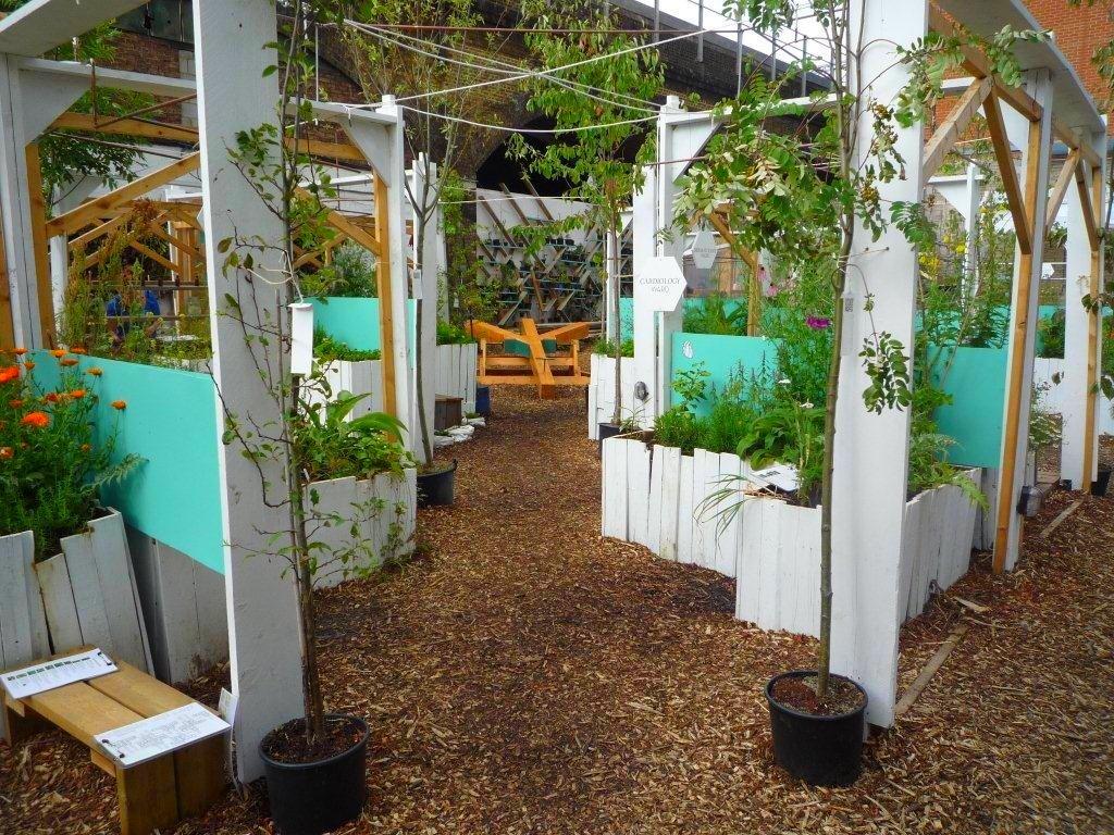 w lonyńskim ogrodzie społecznym - urban phsycis garden