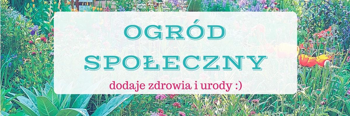 ogrody społeczne dodają zdrowia i urody - to motto Fundacji My w Sopocie