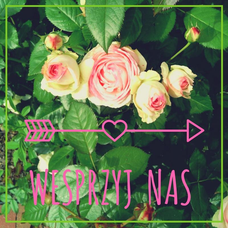 banner z różami z ogrodu społecznego - wesprzyj naszą fundację datkiem