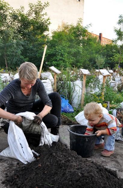 dzieci pomagają w ogrodzie