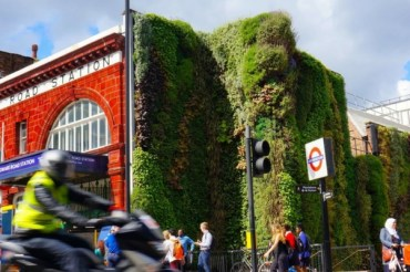 Londyn ma najlepszy sposób na trawę w mieście, gdyż