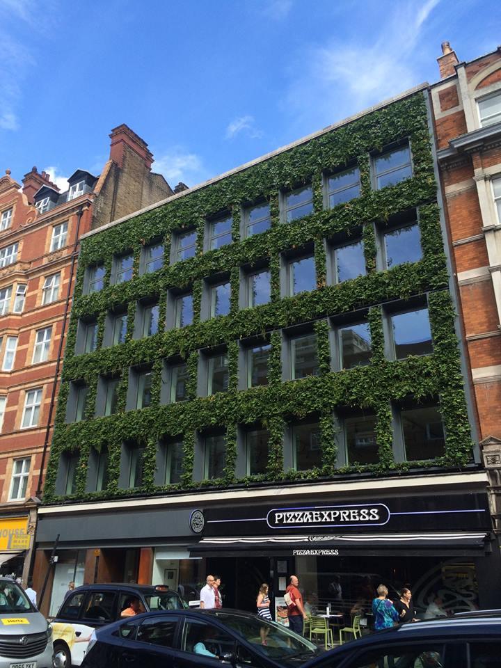 cała fasada budynku w zieleni londyn