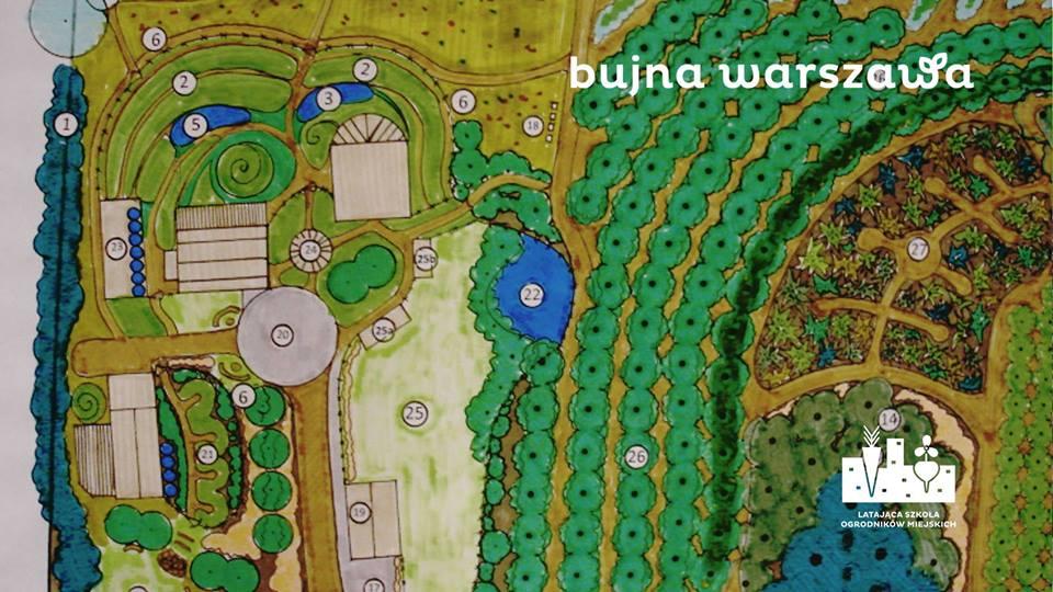Bujna Warszawa – zobacz co rośnie w ogrodach stolicy. Robi wrażenie.