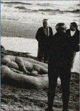 Przekleństwo Sląskiego Ruchu Ekologicznego 1987-2015_html_m79759c1a