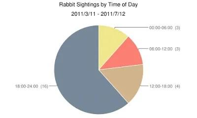 Rabbit Sightings