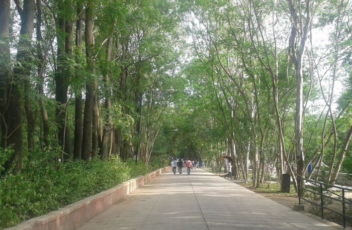 Pathway at Katraj Zoo. Pune, India