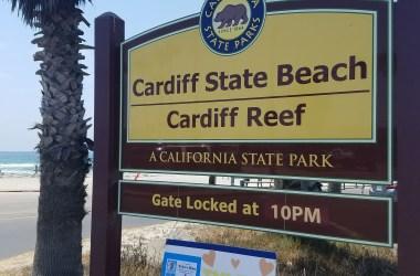 Cardiff State Beach
