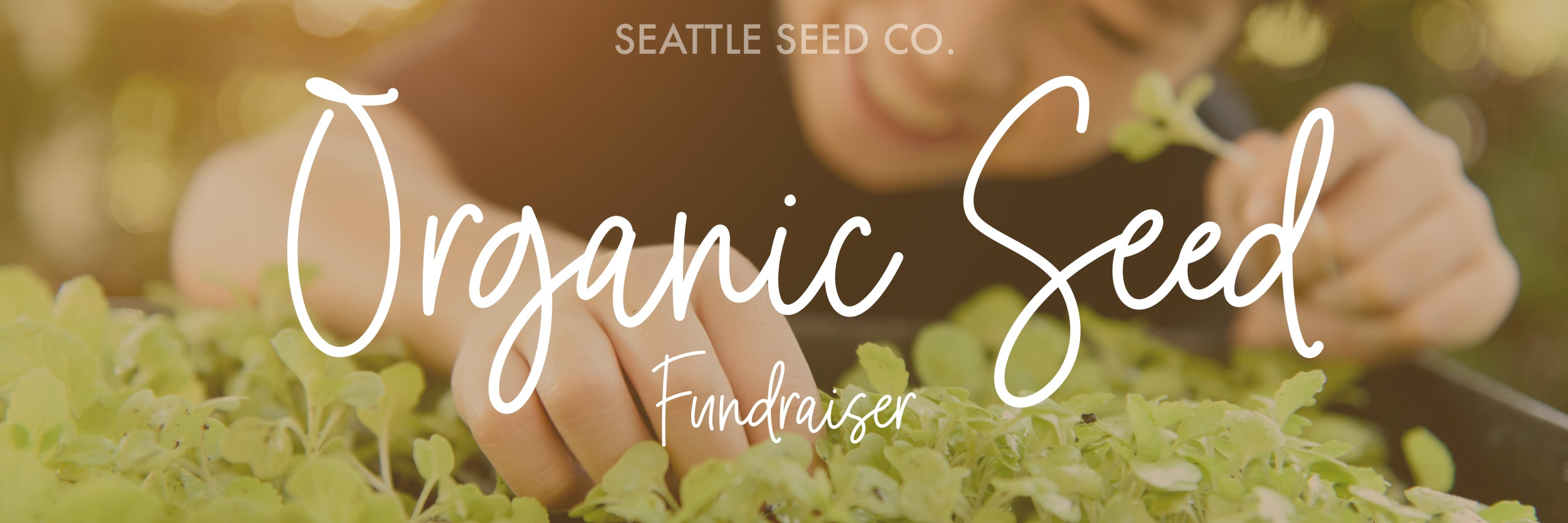 Seattle Seed Company Fundraiser