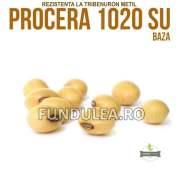 Samanta soia PROCERA 1020 SU, Baza, Compania Seminte Fundulea