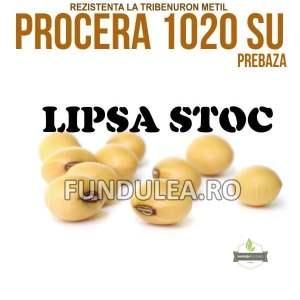 Samanta soia PROCERA 1020 SU, PREBaza, Compania Seminte Fundulea
