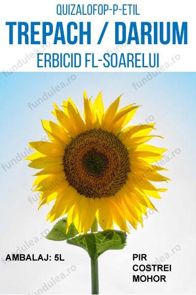 erbicid floarea-soarelui, rapita, sfecla, TREPACH, 5L