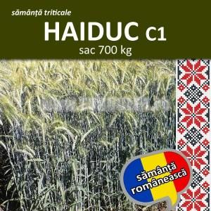 Samanta triticale HAIDUC C1