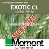Sămânță grâu EXOTIC