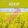 Sămânța rapiță HEKIP