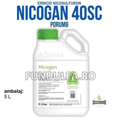 NICOGAN 40 SCeste un erbicid sulfonilureic care conţine nicosulfuron