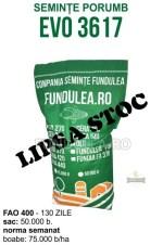 Samanta porumb EVO 3617 (grupa FAO 400)