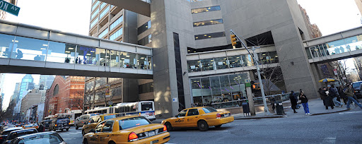 Best Colleges In New York