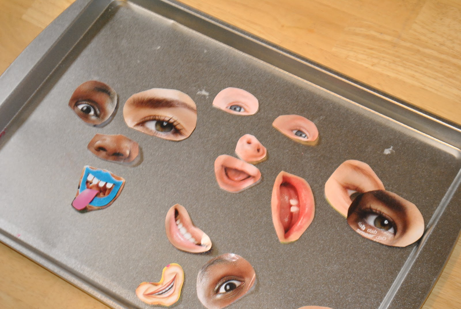 Magnetic Faces