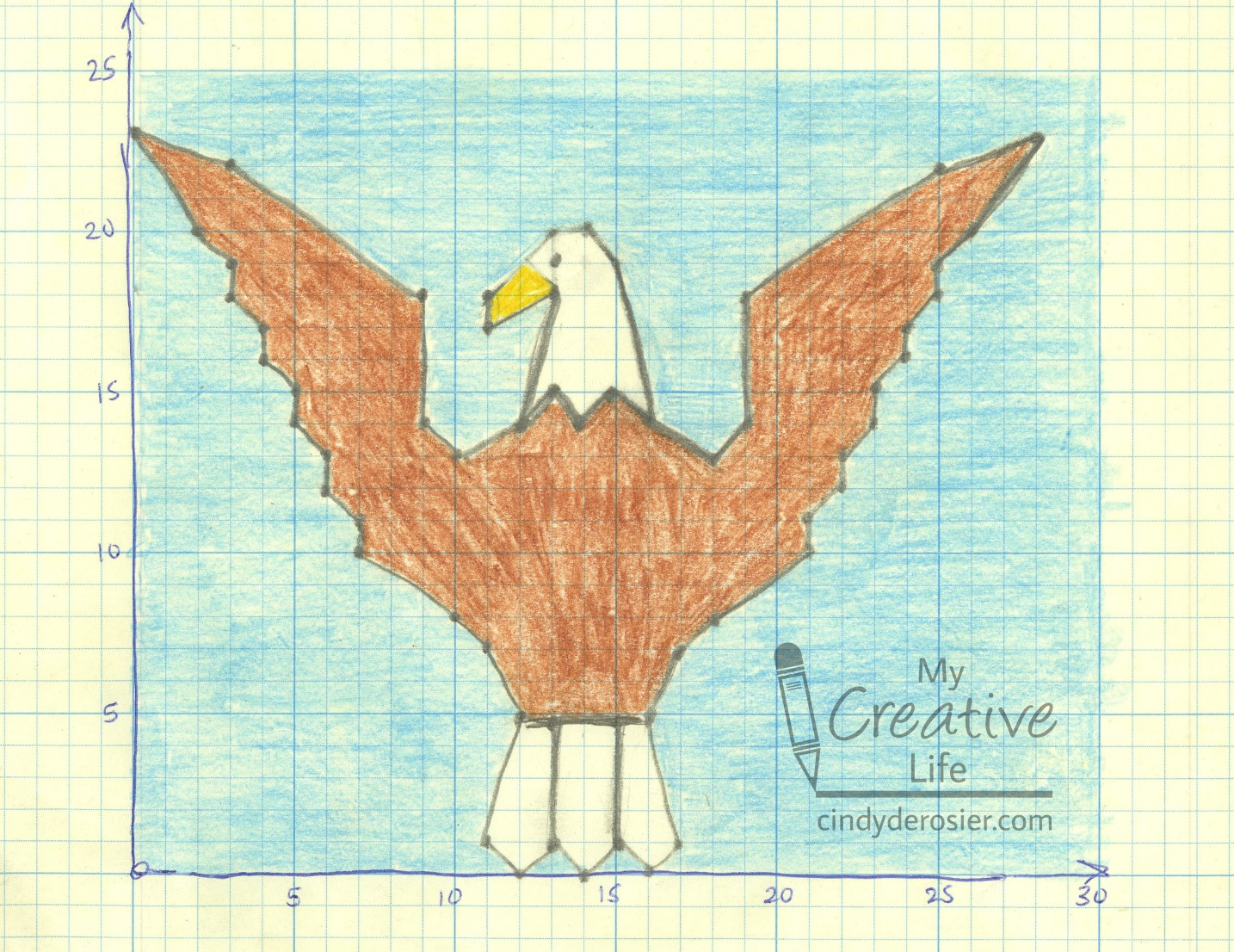 Bald Eagle Picture Graph