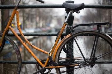 bike experience amsterdam