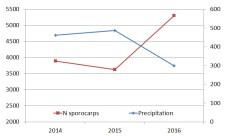 Total fruiting abundance and precipitation during vegetation season by years