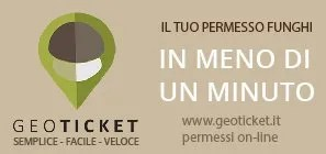 Geoticket.it banner