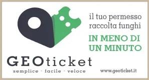 Geoticket banner 2021