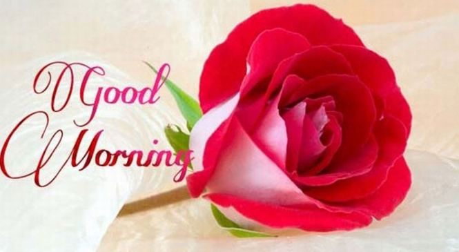 Sweet Good Morning SMS Messages for Wife