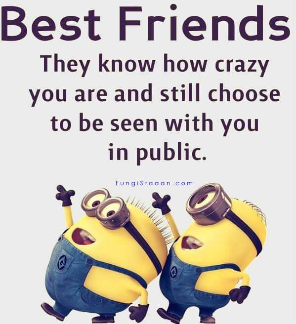 Funny Minions Friendship Quotes