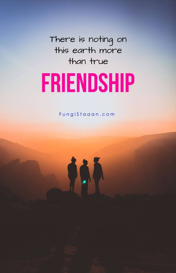 Images of Friendship Quotes