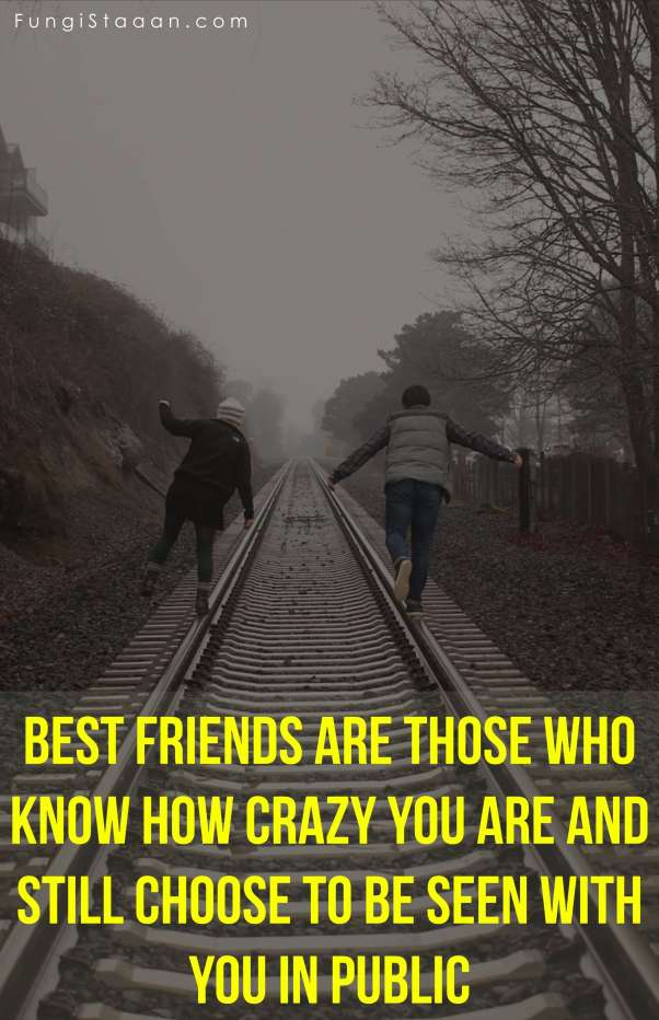 Lifelong Friendship Quote Images