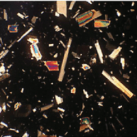 Asbestos in New Building Materials: A School Case Study