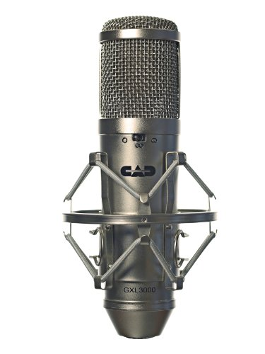 BEST MIC FOR RAP VOCALS: ULTIMATE LIVE AND STUDIO 5