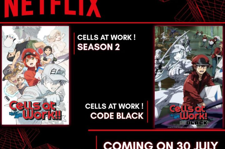 Netflix India to Stream Cells at work! season 2 & Cells at work! Code Black from 30 July - ANIME NEWS INDIA