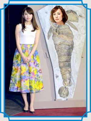 米倉涼子 体重