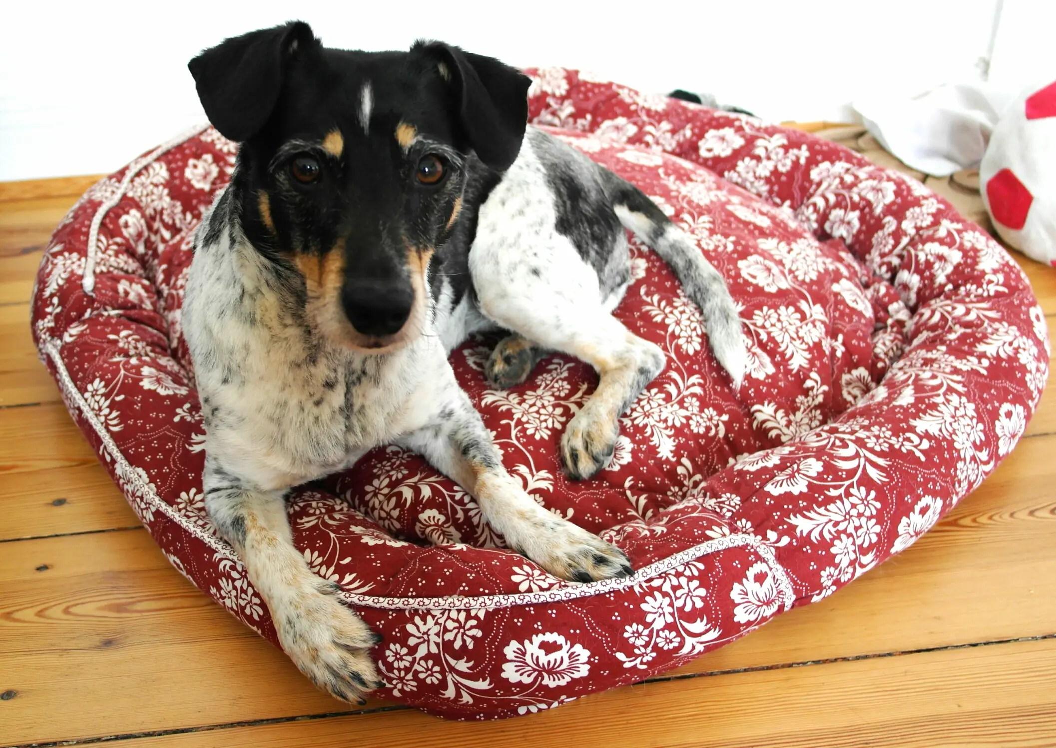 recycling hundek rbchen aus 2 kissenbez gen. Black Bedroom Furniture Sets. Home Design Ideas