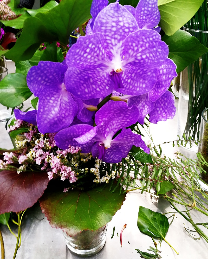 Orchideenworkshop auf der IGA Berlin