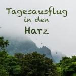 Tagesausflug von Berlin in den Harz mit dem HEX