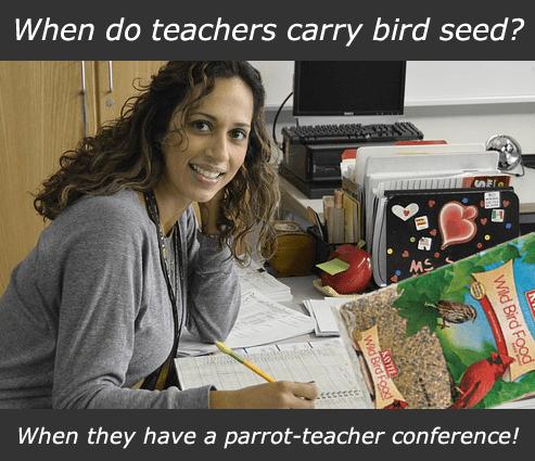 birdseed-teacher
