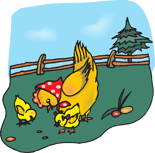 Jokes About Chicken Kids Chicken Jokes Fun Kids Jokes