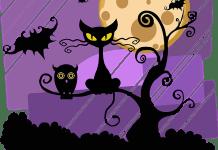 Black Cat Jokes for Kids on Halloween