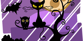 Black Cat Jokes for Kids on Halloween