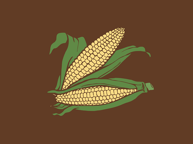 corny but sweet jokes