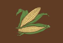 Sweet Corn - Corn Jokes - Jokes about Corn